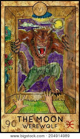 Moon. Werewolf. Fantasy Creatures Tarot full deck. Major arcana. Hand drawn graphic illustration, engraved colorful painting with occult symbols