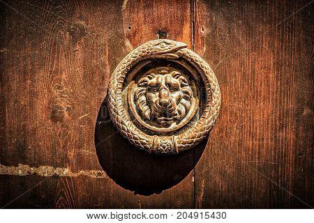 Old metal lion on the wooden door.