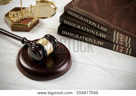 Immigration Law Book With Judges Gavel