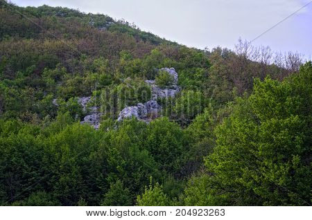 Dalmatia rocky hills landscape, spring time travel