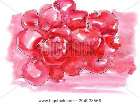 Pattern hand drawing watercolor Red and pink fresh apples