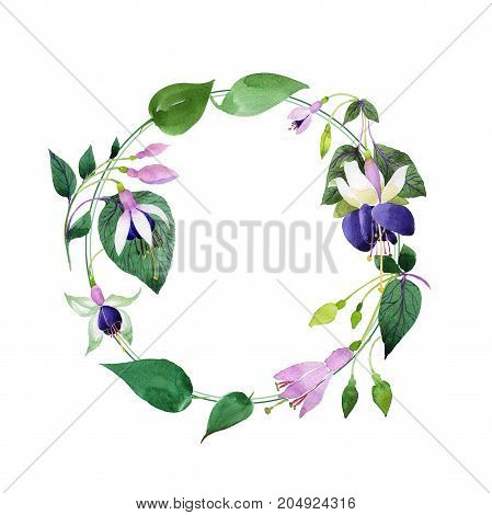 Wildflower fuchsia flower wreath in a watercolor style. Full name of the plant: fuchsia. Aquarelle wild flower for background, texture, wrapper pattern, frame or border.
