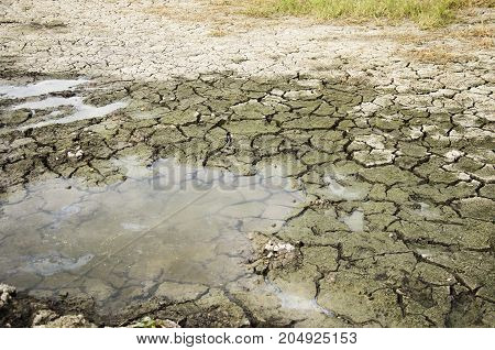 Waterless In Puddle At Desert Land Because Drought Disaster