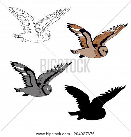 Vector illustration, an image of a flying owl. Black line, black and white and gray spots, black silhouette, color image