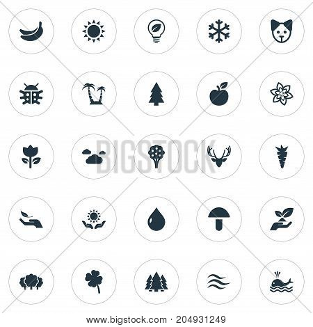 Elements Orca, Jungle, Reef And Other Synonyms Drop, Wave And Forest.  Vector Illustration Set Of Simple Nature Icons.