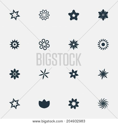 Elements Ranunculus, Gerberas, Camellia And Other Synonyms Aster, Bouquet And Dahlia.  Vector Illustration Set Of Simple  Icons.