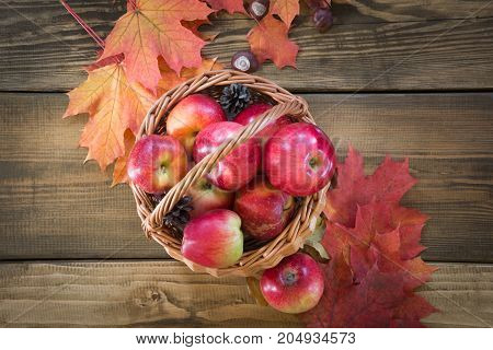 Autumn harvest apples in basket colorful autumn leaves on wooden board. Fall still life vintage style. Top view.