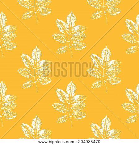 Seamless pattern of leaves. Leaf imprints. Autumn background. Vector illustration
