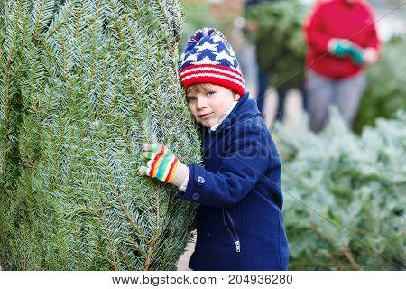 Cute little smiling kid boy holding christmas tree. Happy child in winter clothes, hat, gloves choosing xmas tree in outdoor shop. Family, tradition, celebration concept