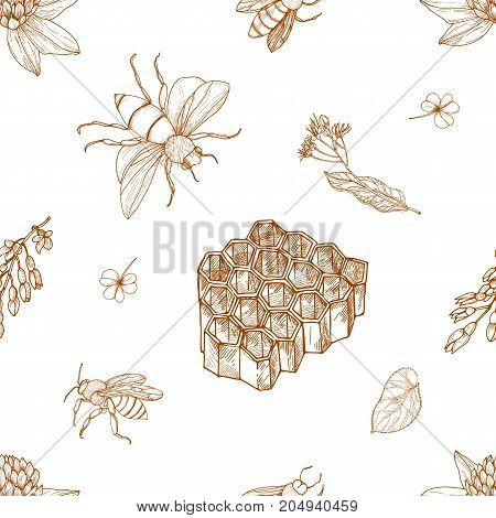 Elegant monochrome seamless pattern with hand drawn bees, honeycomb, linden leaves and blooming meadow flowers on white background. Natural vector illustration for textile print, wallpaper