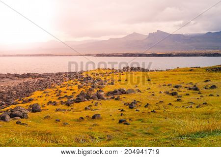 Volcanic landscape with green plains and rocky coast in Snaefellsnes peninsula, Iceland.