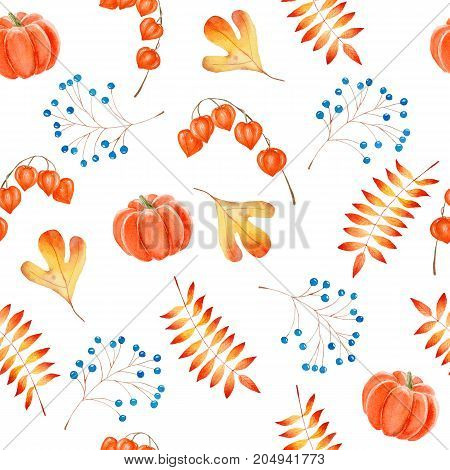 Pumpkins chinese lantern plants and leaves in a watercolor hand drawn seamless pattern with autumnal theme