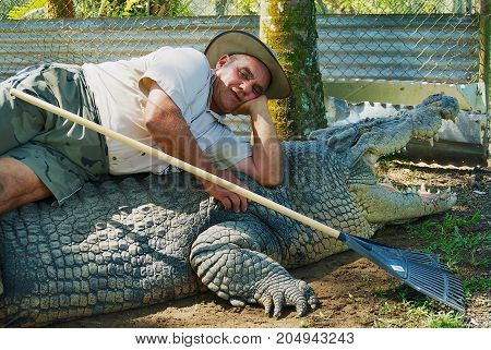 JOHNSTONE RIVER, AUSTRALIA - NOVEMBER 06, 2007: Crocodile farmer Mick Tabone lays on the biggest monster reptile kept behind fence in Australia in Jonston River, Australia.