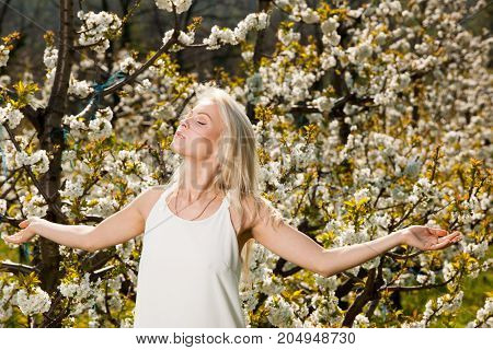 Beautiful young woman on cherry plantation in spring - cherry blossom girl