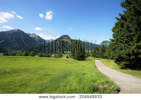 Mountain trail in the Tyrolean Alps in summer