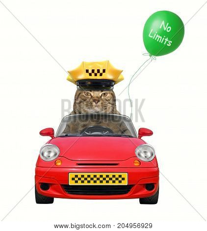 The cat taxi driver is in a red car. White background.