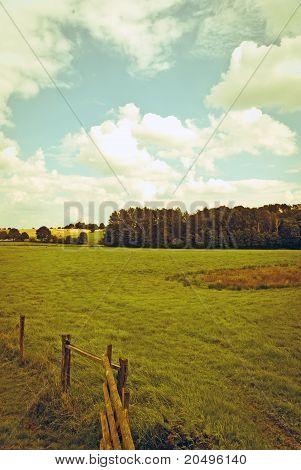 vintage farmland