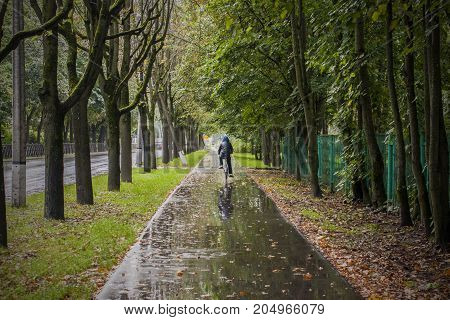 Bicycle hike in rainy autumn weather in green and yellow park on wet path
