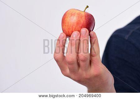 Apple Fruit Isolated On Light Grey Background