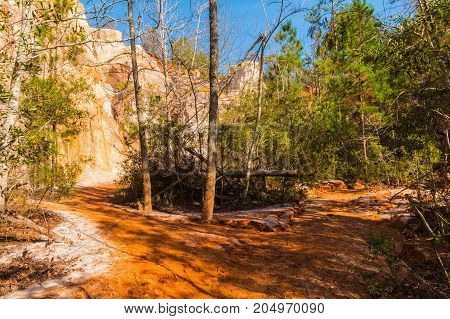 Red loamy and clay footpath the wall and thicket at bottom of the Providence Canyon in sunny autumn day USA