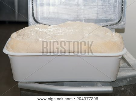 a french bread dough in a tray