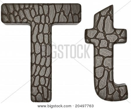 Alligator Skin Font T Lowercase And Capital Letters