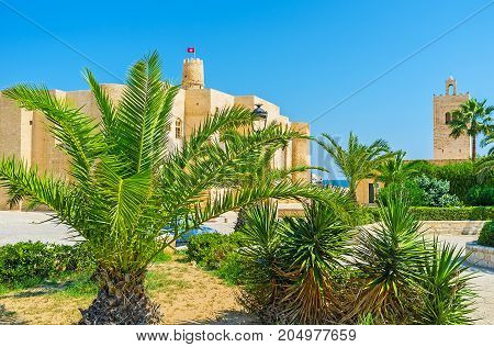 Ribat Of Monastir Through The Palms