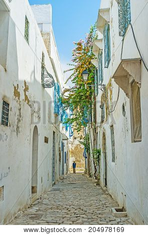 Architecture Of Tunis Medina