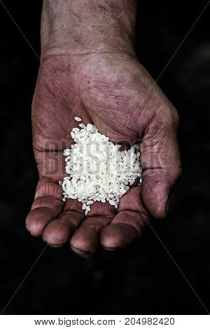 On the palm of a man is a lot of rice grains