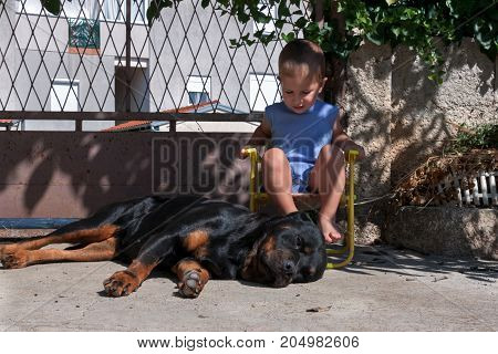 Kid sitting next to a dog outside while dog resting