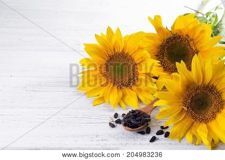 Sunflower seed on wooden spoon on a light background, copy space