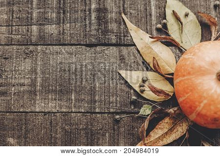 Beautiful Pumpkin With Leaves And Berries On Rustic Wooden Background, Top View. Space For Text. Tha