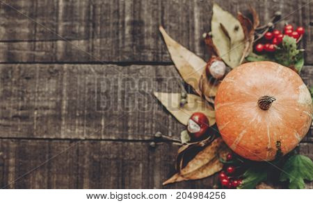 Fall Photo, Beautiful Pumpkin With Leaves And Berries On Rustic Wooden Background, Top View. Space F
