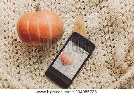 Phone With Photo Of Pumpkin And Leaf With Cute Pumpkin On Warm Sweater, Top View. Instagram Blogging