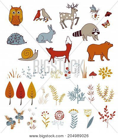 Cute vector set with doodle forest plants and animals. Birds, bear, hare, deer, raccoon, and fox. Kids autumn collection.