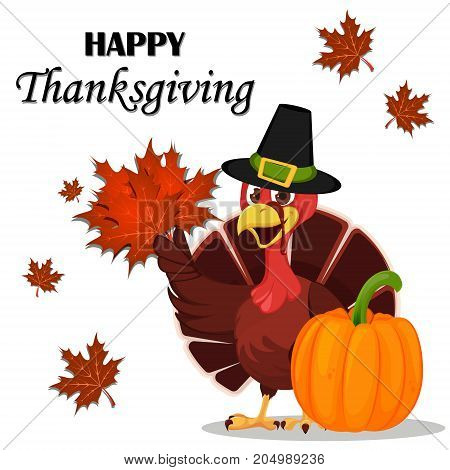 Thanksgiving greeting card with a turkey bird wearing a Pilgrim hat and holding maple leaves. Vector illustration on white background