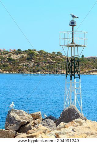 Seagull On Beacon.