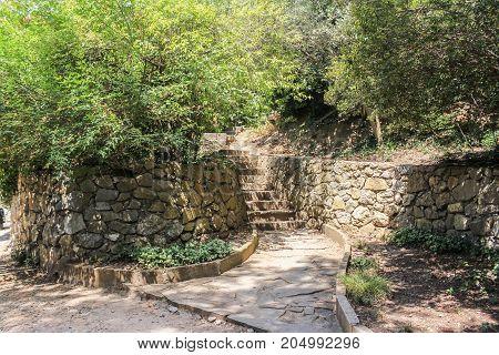 Retaining walls made of stone. Lush vegetation of the Nikitsky Botanical Garden in the Crimea.