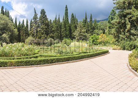 Flowerbeds with roses in the garden. Lush vegetation of the Nikitsky Botanical Garden in the Crimea.