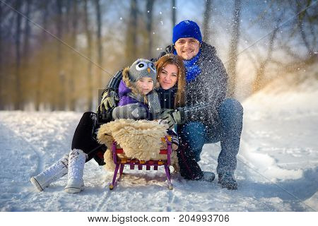 the happy close-knit family poses on the sledge in the winter wood it is snowing