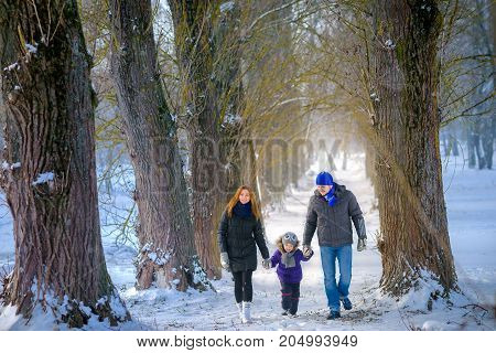 happy family with the child walks in the winter wood