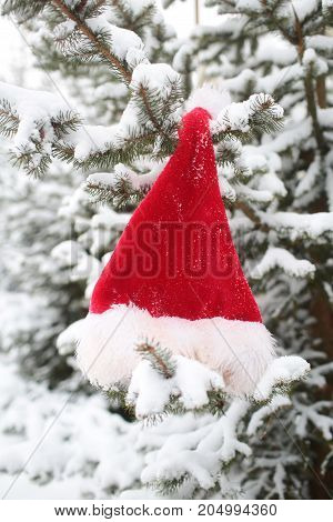 Santa Claus Hat Hanging On Fir Tree Covered With Snow