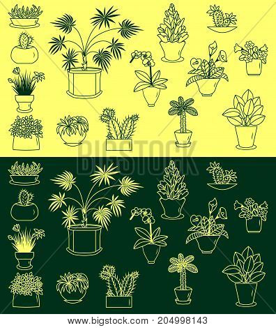 Indoor plants vector icons set illustration sketch