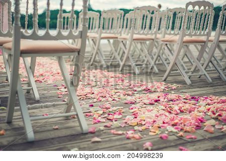 Rosé flower petals scattered on a wooden floor near the chairs at a wedding ceremony