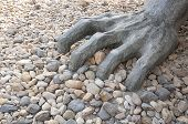 A stone hand grasping at the ground within the Nanjing massacre site museum within the city of Nanjing China in Jiangsu province. poster