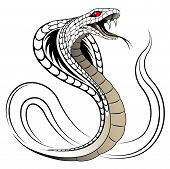 Snake, Cobra in the form of a tattoo poster