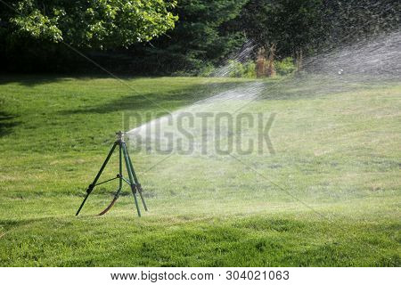 Lawn Sprinkler. Outdoor Lawn Sprinkler watering green grass. Water being sprayed by automatic sprinkler system outdoors in a yard. Lawn and Garden Care concept.