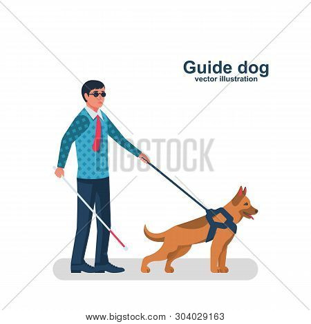 Blind man character with guide dog. Person with pet companion. Human with a white cane on street. Vector illustration flat design. Isolated on white background. poster