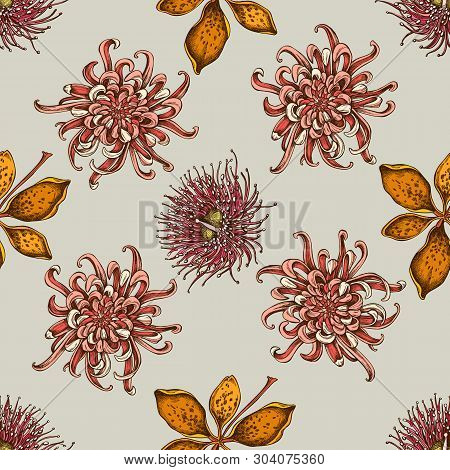 Seamless Pattern With Hand Drawn Colored Japanese Chrysanthemum, Blackberry Lily, Eucalyptus Flower