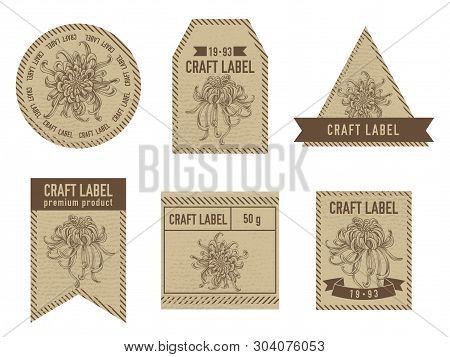 Craft Labels With Japanese Chrysanthemum Hand Drawn Illustration